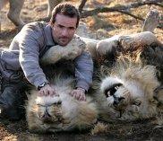 lion3dm2606_468x406
