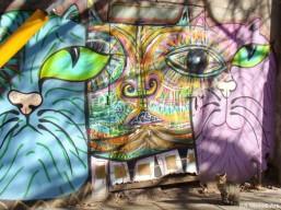 mondo-lila-interview-buenos-aires-street-art-buenosairesstreetart.com-graffiti-tour-buenos-aires